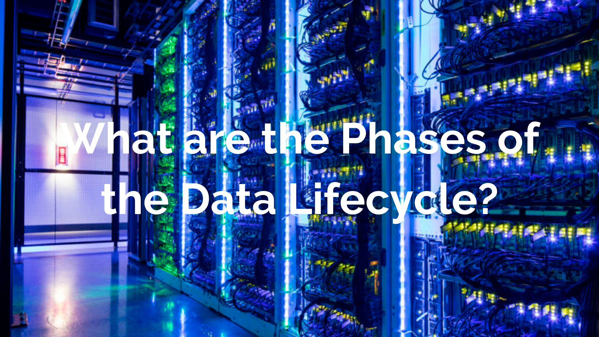 What are the Phases of the Data Lifecycle_